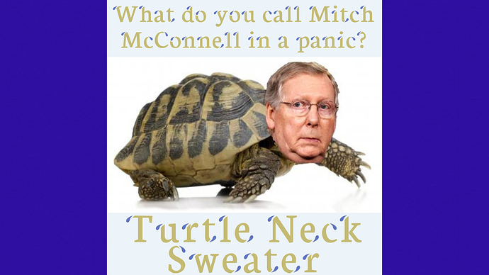 McConnell Turtle 1