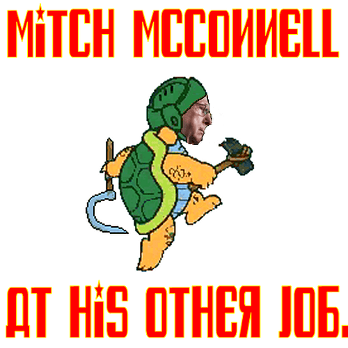 McConnell%20Mario%20Turtle