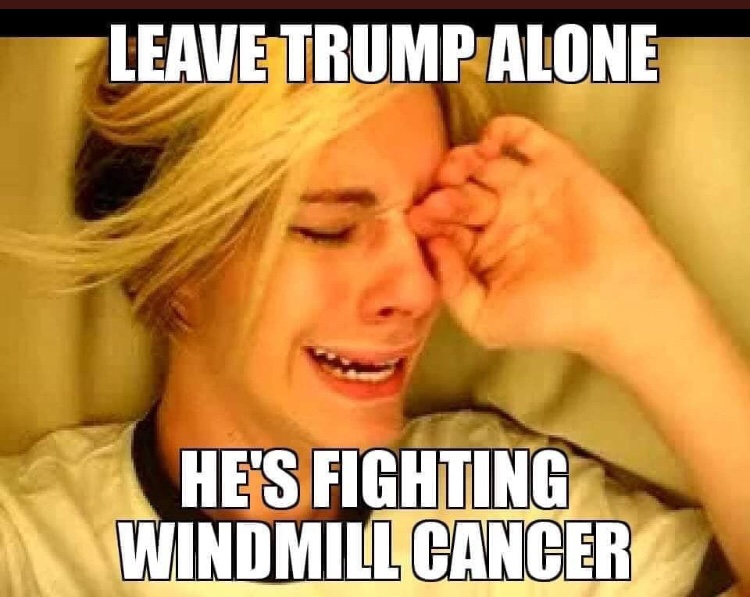 2019-12-25%20leave%20trump%20alone%2C%20he's%20fighting%20windmill%20cancer