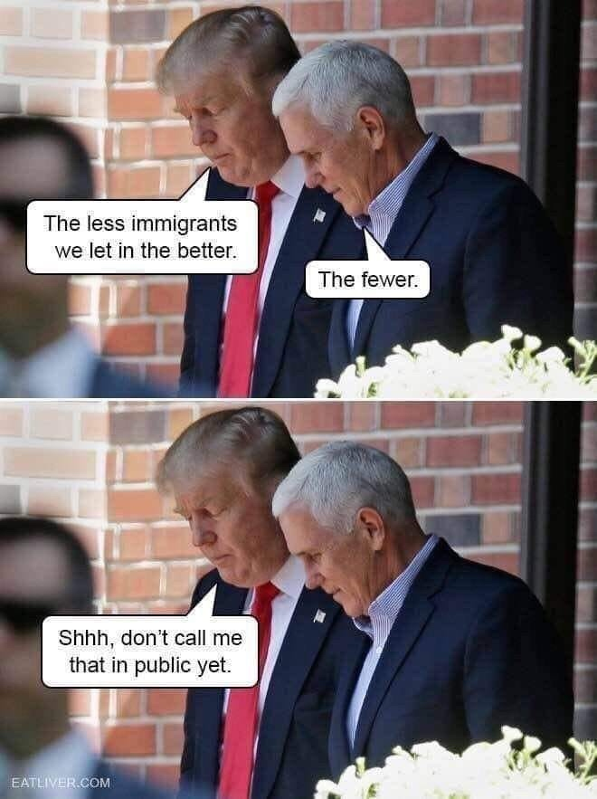 Trump%20The%20Fewer